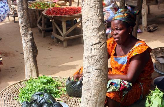 Afrikkalaisen sananlaskun mukaan viisas istuu varjossa. Kauppiaat myyvät tuotteitaan usein puiden katveessa, vaikka yli 30 asteen helle yltää varjoonkin.