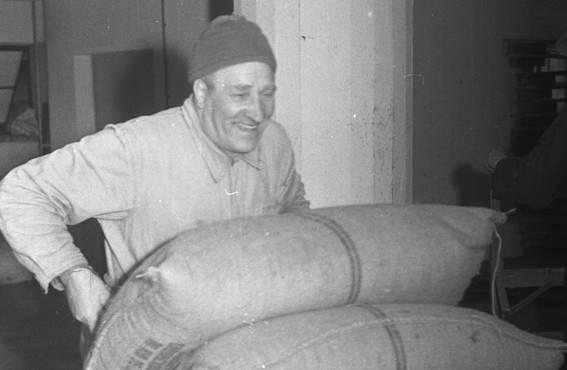Vihtori Rannikko toimeliaana OTK:n Katajanokan varastolla 1950-luvulla.