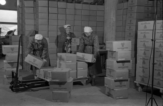 OTK:n kahvipaahtimon varastolla työskenteli sodan jälkeen myös naisia. Jo 1900-luvun alussa keksitystä pumppukärrystä oli suuri apu raskaiden laatikkopinojen siirtelyssä.